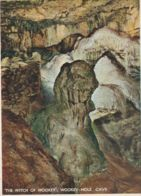Postcard - The Witch Of Wookey Hole Cave No  Card No. Unused Very Good - Cartes Postales