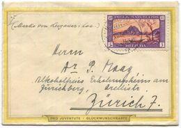 2055 - Pro Juventute Brieflein 1929 Von MÄNNEDORF Nach ZÜRICH - Pro Juventute
