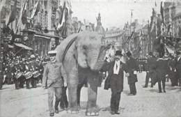 Belgique - Anvers - Fêtes Coloniales 6 Juin 1909 - L' éléphant - Antwerpen