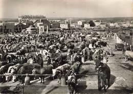 CPSM Grand Format 79 - Parthenay - Le Champ De Foire - Marché Aux Bestiaux - Parthenay