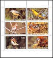 577 MNH ** Géorgie Bloc Oiseaux (bird Birds Oiseau) Passereaux - Papillons
