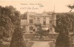 Belgique - Tournai - Froyennes - Château Des Mottes - Doornik