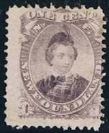 New Foundland, 1866/71, # 20 Y, MNG - 1865-1902