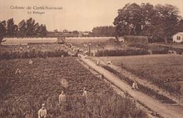 Colonie De Cortil-Noirmont Le Potager - Chastre