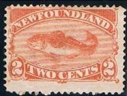 New Foundland, 1887, # 41, MNG - 1865-1902