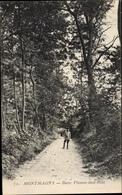 Cp Montmagny Val D'Oise, Butte Pinson Sous Bois - Sonstige Gemeinden