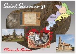 31 - Saint-Sauveur - Carte Géographique De La Hte-Garonne - 4 Vues + 5 Petits Chats -  Cpm - Vierge - - Autres Communes