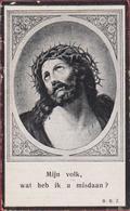 Isabella Huyghe Jan Pintens Van Der Steen Ruysbroeck 1925 Doodsprentje Bidprentje Image Mortuaire - Devotion Images