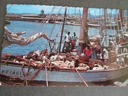 INTER ISLAND SCHOONERS, PORT OF SPAIN HARBOUR, TRINIDAD, WEST INDIES 1968 - Postcards