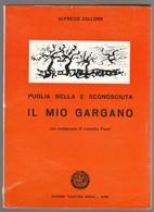 IL MIO GARGANO PUGLIA BELLA E SCONOSCIUTA - Tourisme, Voyages
