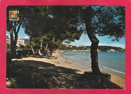 Modern Post Card Of Palma Nova,Mallorca, Autonomous Community Of Balearic Islands, Spain,A63. - Mallorca