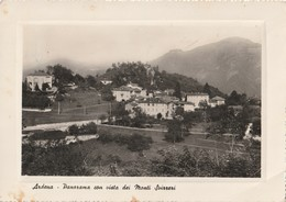 ARDENA - Panorama Con Vista Dei Monti Svizzeri - - Varese
