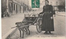 45  ATTELAGE DE CHIENS LOIRET   (editeur Orleans 489)  LA LAITIERE - Altri Comuni