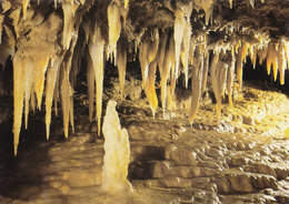 24 Les Eyzies De Tayac Grotte Du Grand Roc L'Homme Et L'Enfant (2 Scans) - France