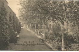 Dinant - Dinant