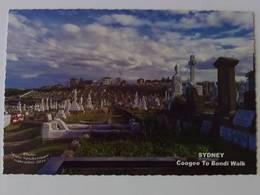 SYDNEY - Coogee To Bondi Walk - Sydney