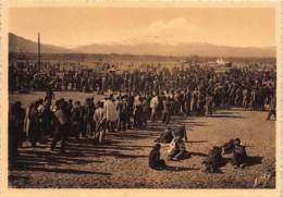 GUERRA CIVIL - Retirada - Unrincon Del Campo De Argelès-sur-Mer Y El Canigo - Ed. APA 10. - Spagna
