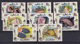 Dubai 1969, Fish Complete Set Vfu. - Dubai