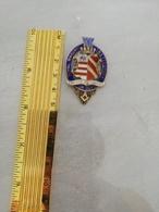 16748   MEDAILLE FRANC MACONNERIE  INSTITUTION ROYAL MACONIC - Freemasonry