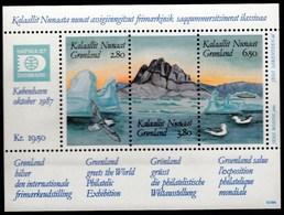 Greenland Gronland / World Philatelic Exhibition HAFNIA / Birds, Seagul, Mountain, Glacier, Ship / MNH / Mi BL 1 - Stamps On Stamps