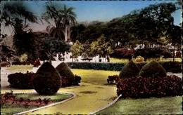Cp Petionville Haiti, Place Boyer, Parkpartie Mit Sträuchern, Palmen - Haiti