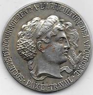 Médaille En Argent - Sté Encouragement à L' Agriculture De La Dordogne - Professionnels / De Société