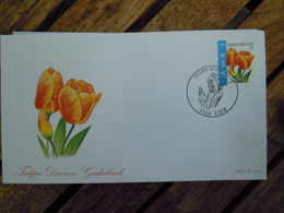 OCB Nr 3406 Buzin Tulp Tulipa  Flora Flower Bloem   ( Class Gris Box ) Stempel Lier - FDC
