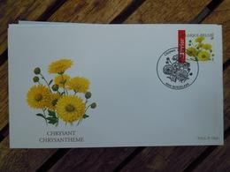 OCB Nr 3432 Buzin Chrysant  Flora Flower Bloem   ( Class Gris Box ) Stempel Roeselare - FDC