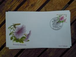 OCB Nr 3722 Buzin  Petunia    Flora Flower Bloem   ( Class Gris Box ) Stempel Estampius - FDC