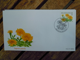 OCB Nr 3785 Buzin Afrikaantje Tagetes     Flora Flower Bloem   ( Class Gris Box ) Stempel Petit Rechain - FDC