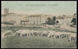 Canet-Village Pyrenees-Orientales Vers 1910  Vue D'ensemble - Canet En Roussillon