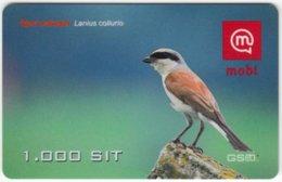 SLOVENIA B-435 Prepaid Mobi - Animal, Bird, Red-backed Shrike - Used - Slovenië