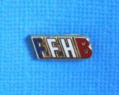 1 PIN'S //  ** FÉDÉRATION FRANÇAISE DE HANDBALL ** . (A.B PARIS) - Handball