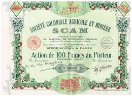 Titre Ancien - Société Coloniale Agricole Et Minière - SCAM -Titre De 1938 - Déco - - Afrique