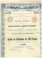Titre Ancien - Compagnie Des Oléonaphtes- Société Anonyme - Titre De 1899 - N°0831 - Pétrole