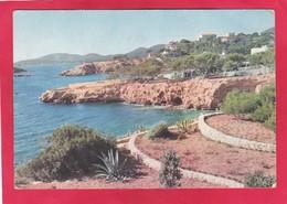 Modern Post Card Of Palma De Mallorca,Balearic Islands, Spain,A64. - Mallorca