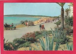 Modern Post Card Of Cala Millor,Mallorca,Islas Baleares,Spain,A65. - Mallorca