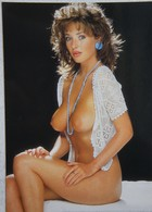 CPAx7 PIN UP Circa 1980 Sexy Nude Woman Girl Series SUNGIRL Femme Nue Nackte Frau Nu Nackt - Pin-Ups
