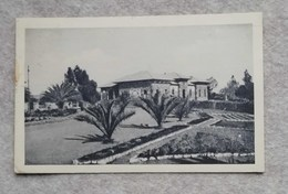 Cartolina Illustrata Asmara - Segreteria Generale, Per Lugo 1935 - Eritrea