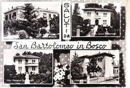 ITALIA -  S. BARTOLOMEO IN BOSCO (ferrara) - Leggi Testo, Animata, Viag.1960 For. Grande - 2020-B-112 - Autres Villes