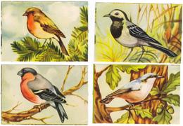 9 Chromos Découpis Oiseaux. (4 Scans) - Animals