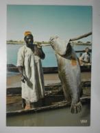 Niger. Pêche D'un Capitaine Dans Le Niger (GF1565) - Niger