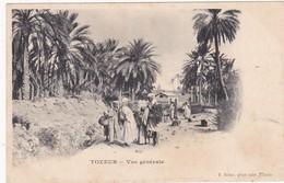 Tunisie : TOZEUR : Vue Générale ( Belle Animation ) Précurseur - Carte Nuage - - Tunisie