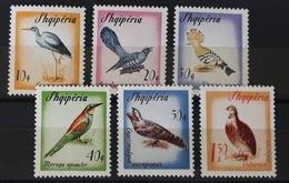 Albanien 1965, VÖGEL Mi 973-78 MNH Postfrisch - Oiseaux
