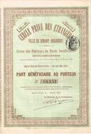 Titre Ancien - Cercle Privé Des Etrangers De La Ville De Dinant (Belgique) - Titre De 1894 - N° 18151 - Casino