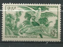 Guyanne Française       - Yvert N° 216   * -   Ava 29428 - Guyane Française (1886-1949)