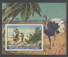 Chad - 1972 Scouts Block MNH__(TH-15850) - Tschad (1960-...)