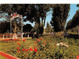 49-MORANNES-N°3696-B/0089 - Sonstige Gemeinden