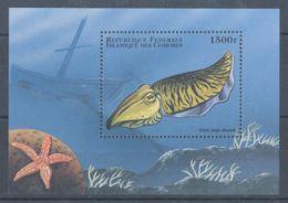 Comoros - 1998 Marine Animals Block (2) MNH__(TH-5670) - Isole Comore (1975-...)