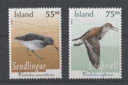Iceland - 2004 Birds MNH__(TH-11941) - 1944-... Republik
